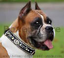 Boxer Dog Collars