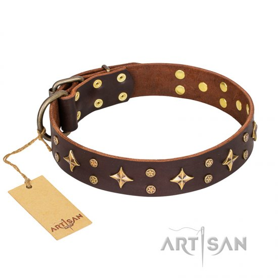 'High Fashion' FDT Artisan Embellished Brown Leather Boxer Collar