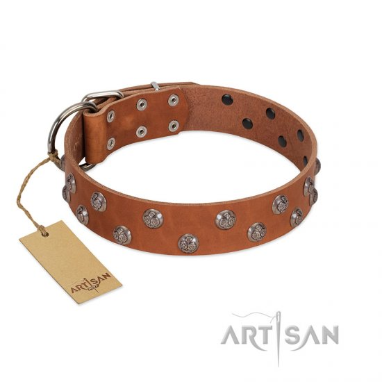 """Waltz of the Flowers"" Handmade FDT Artisan Tan Leather Boxer Collar with Chrome-plated Engraved Studs"