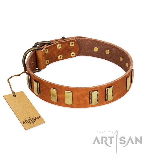 """Olive Slice"" FDT Artisan Tan Leather Boxer Collar with Engraved and Smooth Plates"