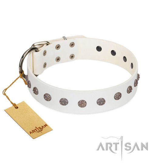 """Fresh Breeze"" FDT Artisan Elegant White Boxer Collar with Silvery Studs"