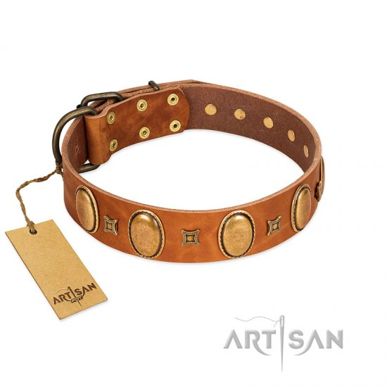 """Glossy Autumn"" Designer Handmade FDT Artisan Tan Leather Boxer Collar with Ovals and Studs"