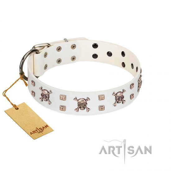 """Skull Island"" Premium Quality FDT Artisan White Designer Boxer Collar with Crossbones and Studs"