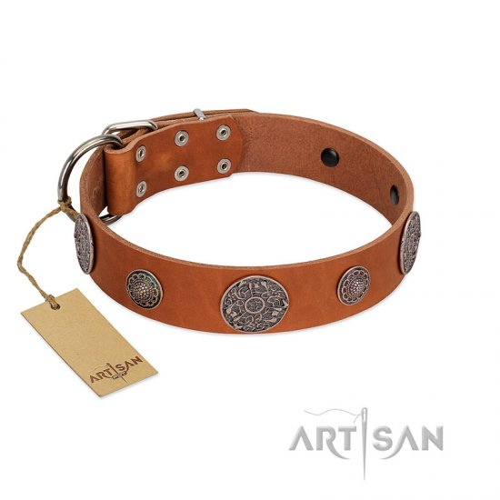 """Foxy Nature"" FDT Artisan Tan Leather Boxer Collar with Chrome Plated Brooches"