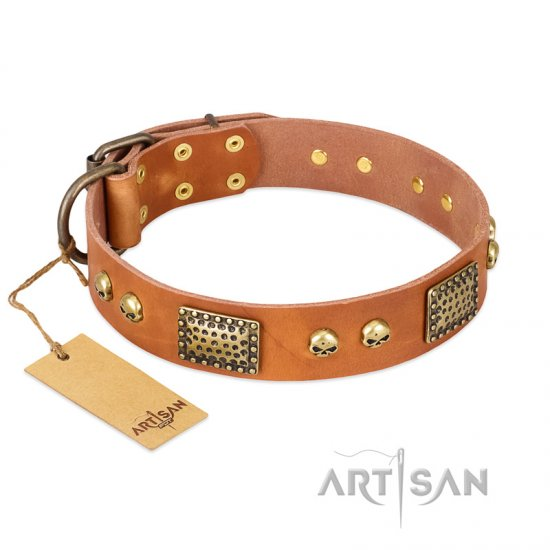 """Saucy Nature"" FDT Artisan Tan Leather Boxer Collar with Old Bronze Look Plates and Skulls"