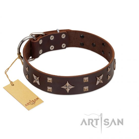 """Stars in Sands"" Modern FDT Artisan Brown Leather Boxer Collar with Studs and Stars"
