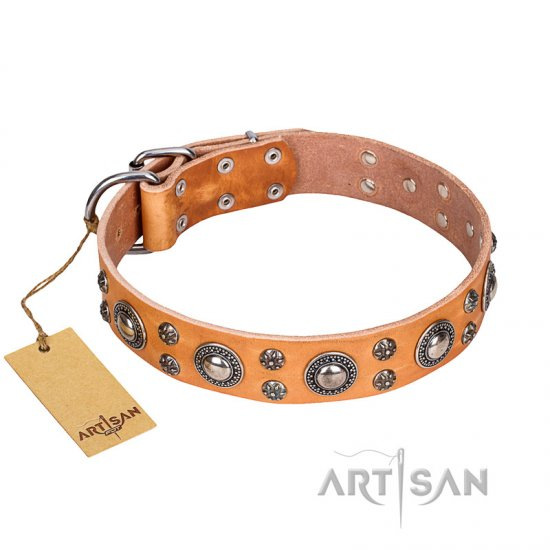 'Extra Sparkle' FDT Artisan Handcrafted Boxer Tan Leather Dog Collar
