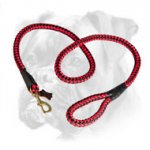 Cord Nylon Boxer Leash for Active Dogs