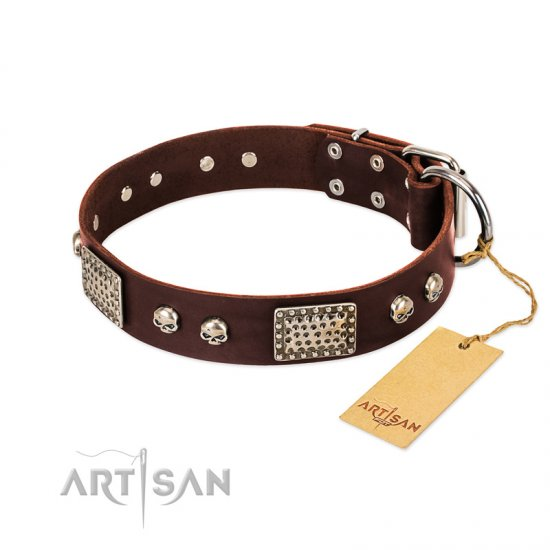 """Pirate Skull"" FDT Artisan Brown Leather Boxer Collar with Old Silver Look Plates and Skulls"