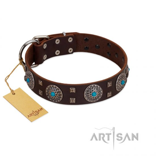 """Hypnotic Stones"" FDT Artisan Brown Leather Boxer Collar with Chrome Plated Brooches and Square Studs - Click Image to Close"
