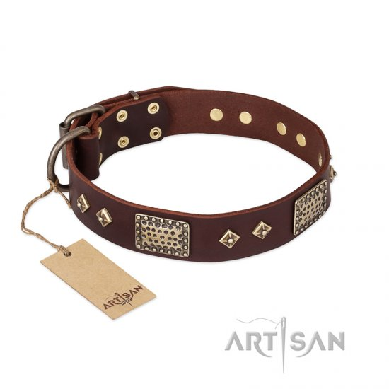 """Loving Owner"" FDT Artisan Decorated Leather Boxer Collar with Plates and Studs"