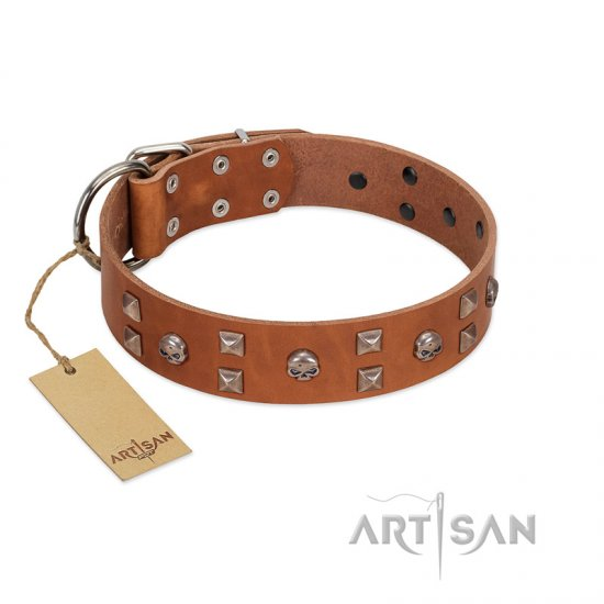 """Enchanted Skulls"" FDT Artisan Tan Leather Boxer Collar with Chrome Plated Skulls"