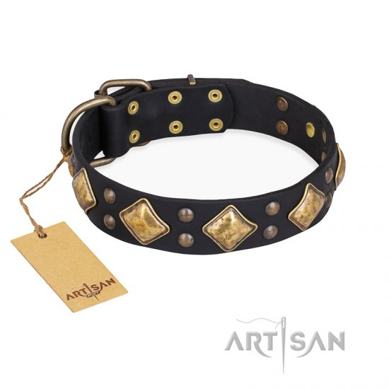 """Fancy-Schmancy"" FDT Artisan Studded Leather Boxer Collar"