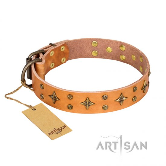 'Top-Flight' FDT Artisan Adorned Tan Leather Boxer Collar