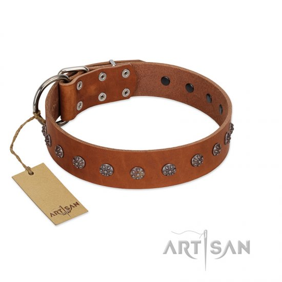 """Daintiness"" Designer Handmade FDT Artisan Tan Leather Boxer Collar with Silver-Like Adornments"