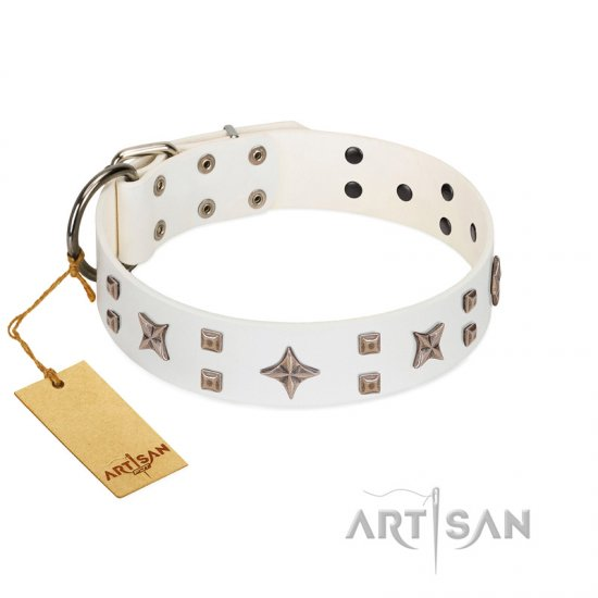 """Starry Heaven"" Designer Handcrafted FDT Artisan White Leather Boxer Collar with Stars and Studs"