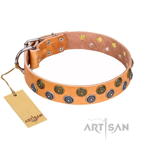 """Precious Sparkle"" FDT Artisan Tan Leather Boxer Collar - 1 1/2 inch (40 mm) Wide"