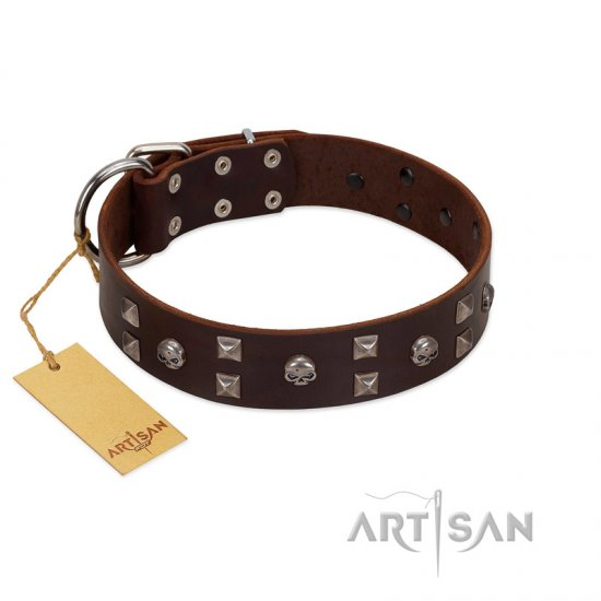 """Brown Shadow"" Designer Handmade FDT Artisan Brown Leather Boxer Collar"
