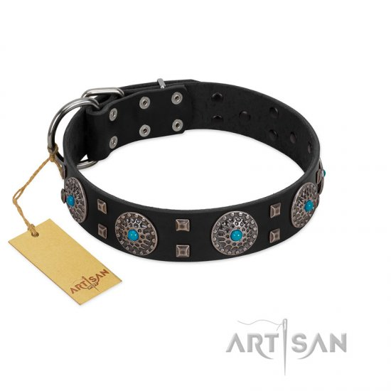 """Boundless Blue"" FDT Artisan Black Leather Boxer Collar with Chrome Plated Brooches and Square Studs"
