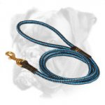 Cord nylon dog leash for Boxer