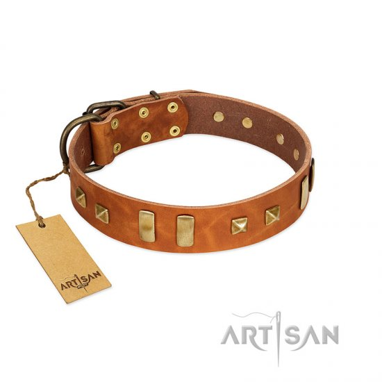 """Sand of Time"" FDT Artisan Tan Leather Boxer Collar with Old Bronze-like Studs and Plates"