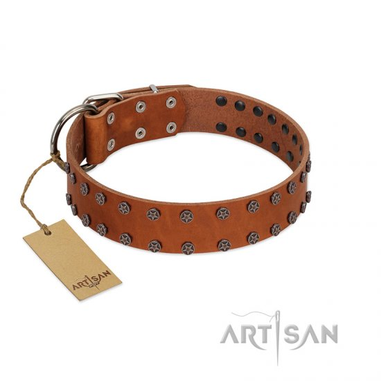 """Star Light"" Stylish FDT Artisan Tan Leather Boxer Collar with Silver-Like Studs"