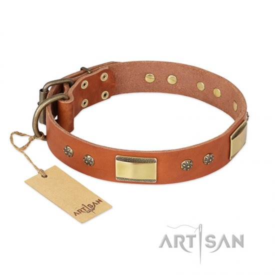 """Enchanting Spectacle"" FDT Artisan Tan Leather Boxer Collar with Old Bronze Look Plates and Round Studs"