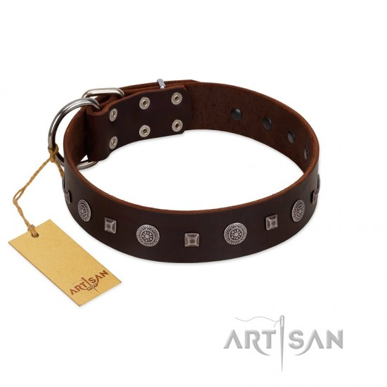 """Pure Sensation"" Exclusive FDT Artisan Brown Leather Boxer Collar with Fancy Brooches and Studs"