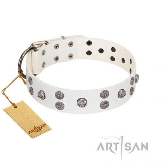 """Edgy Look"" FDT Artisan White Leather Boxer Collar with Silver-like Skulls"