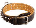 Royal Decorated Nappa Padded Leather Collar for Boxer