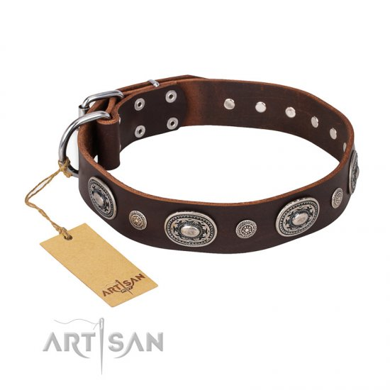 """Extra Pizzazz"" FDT Artisan Adorned Brown Leather Boxer Collar"