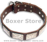 Strong and Reliable Boxer Collar with Brass Massive Plates