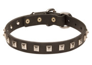 Leather Boxer Collar with One Row of Nickel Studs