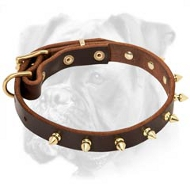 Tremendous Leather Boxer Collar with Brass Spikes for Everyday Use