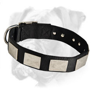 Handmade Nylon Boxer Collar with Massive Plates