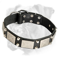 Stylish Leather Collar with Nickel Plates and Pyramids