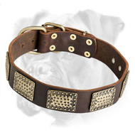 High Quality Leather Boxer Collar with Brass Plates