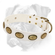 Exclusive Leather White Collar for Boxer Breed