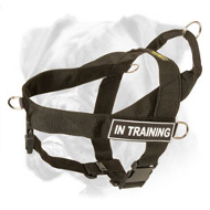 Any Activity and Any Weather Light Weight Boxer Harness with ID Patches