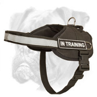 Extremely Light in Weight and Comfortable Nylon Harness for Tracking, Pulling and Walking