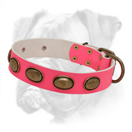 Sophisticated Pink Leather Boxer Collar with Oval Plates for Female Canines