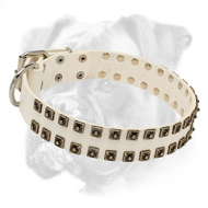 Superb White Leather Boxer Collar with Two Rows of Old Nickel Studs