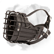 New Boxer Wire Muzzle with Black Rubber Cover