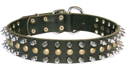 Super Wide Leather Boxer Collar with Nickel Decorations