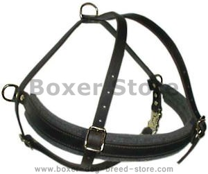 Boxer leather dog harness(handmade leather dog harness)
