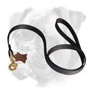 Multifunctional Nylon Boxer Leash