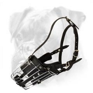 Professional Wire Basket Muzzle for Boxer