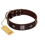 """Cold Star"" Designer FDT Artisan Brown Leather Boxer Collar with Silver-Like Adornments"