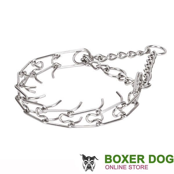 Medium canines prong collar with stainless steel removable links