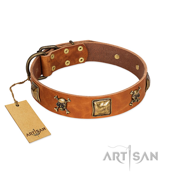 Fashionable genuine leather dog collar with rust resistant studs